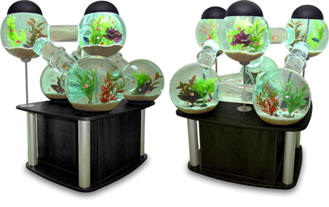 Amazing aquarium designs the aquarist refuge for Octopus fish tank